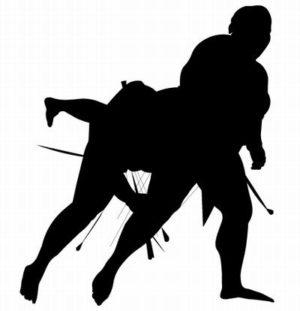 相撲用語の解説